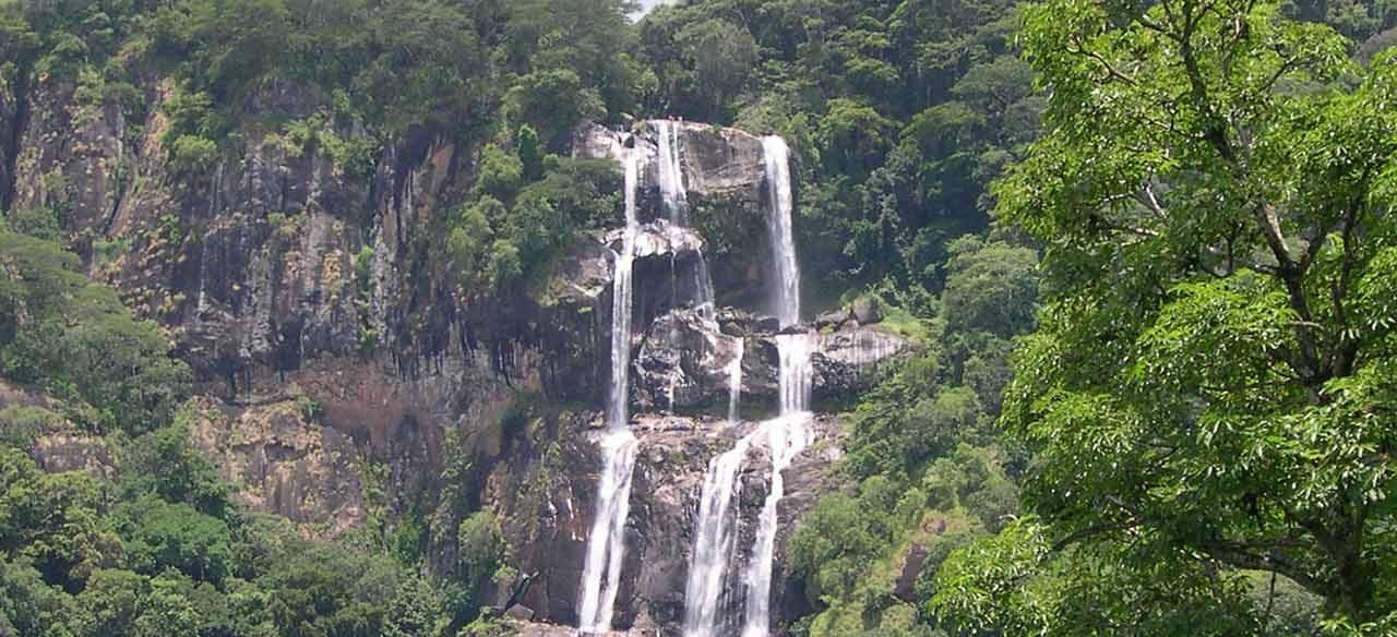 https://www.kilimanjaronaturetours.com/wp-content/uploads/2014/06/Udzungwa-Mountains-National-Park-1280x584.jpg