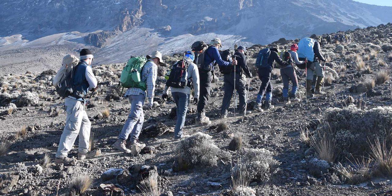 https://www.kilimanjaronaturetours.com/wp-content/uploads/2016/05/kilimanjato-nature-tours-top-4-1280x640.jpg