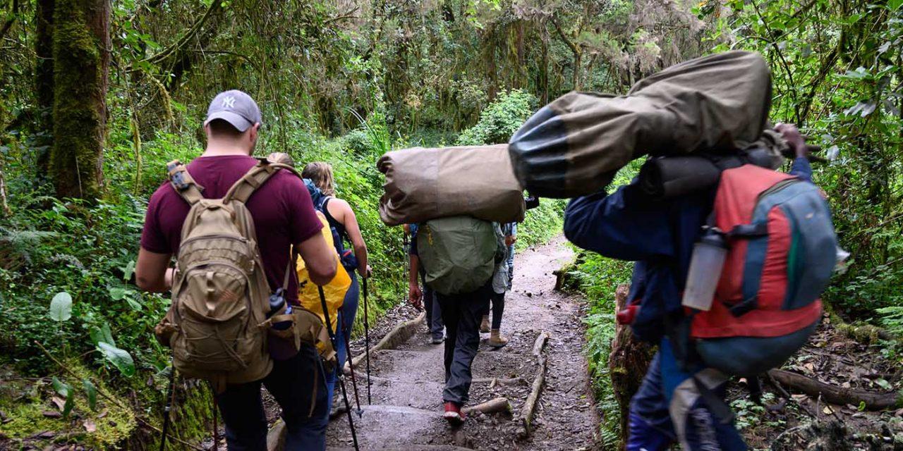 https://www.kilimanjaronaturetours.com/wp-content/uploads/2016/05/kilimanjato-nature-tours-top-6-1280x640.jpg